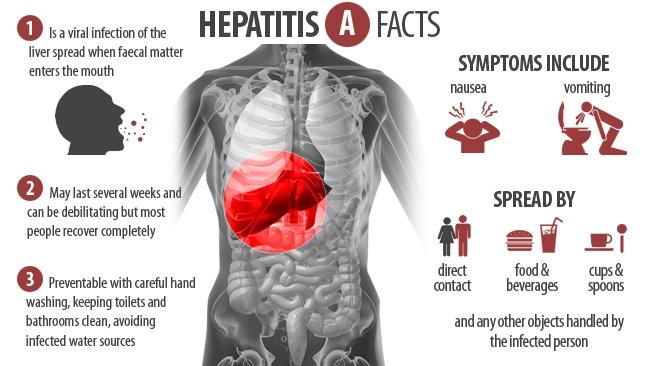 hepatitis A haris715