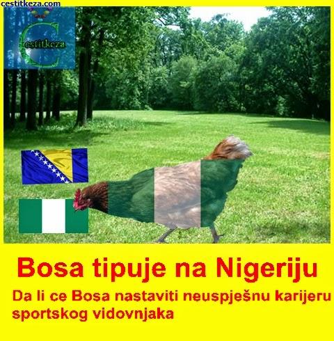 bosna nigerija pobjednik