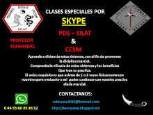 CLASES ESPECIALES POR SKYPE (A DISTANCIA)