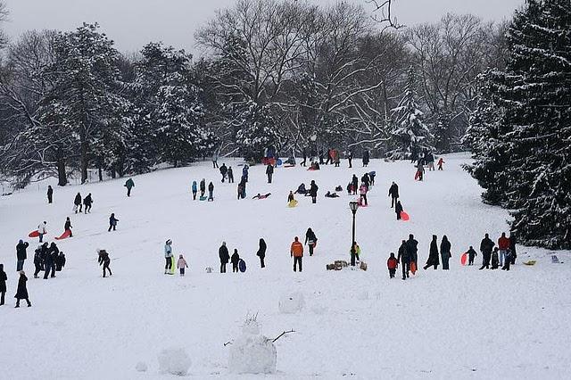 Sledding Central Park