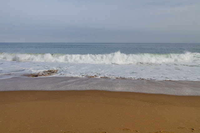 waves breaking on half moon bay beach