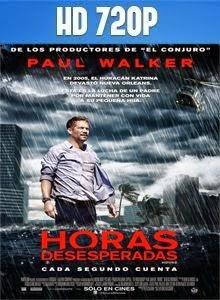 Horas Desesperadas HD 720p Latino 2013