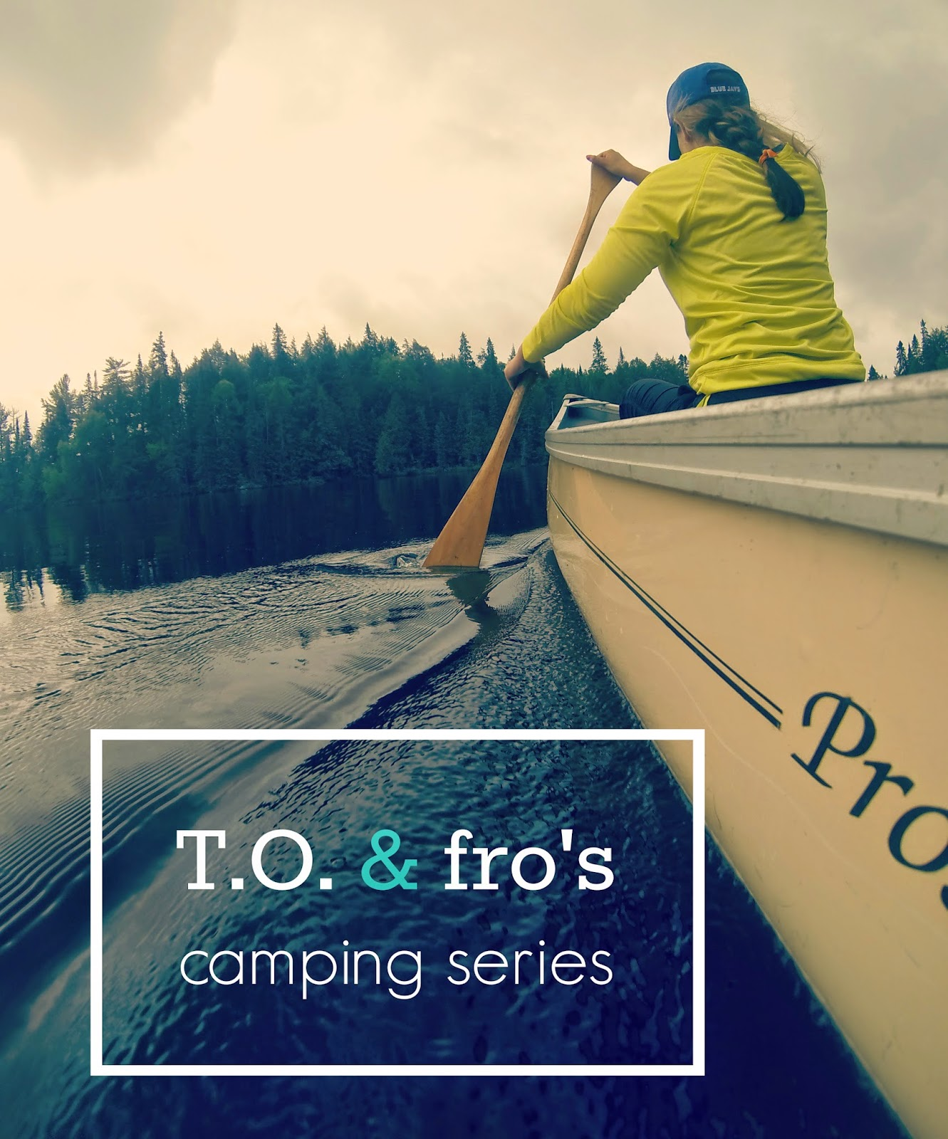 T.O. & fro's camping series