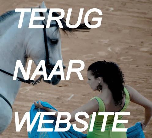 klik hieronder om terug tegaan naar website WELKOM-IN-ANDALUSIE.COM