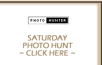 Saturday Photo Hunt