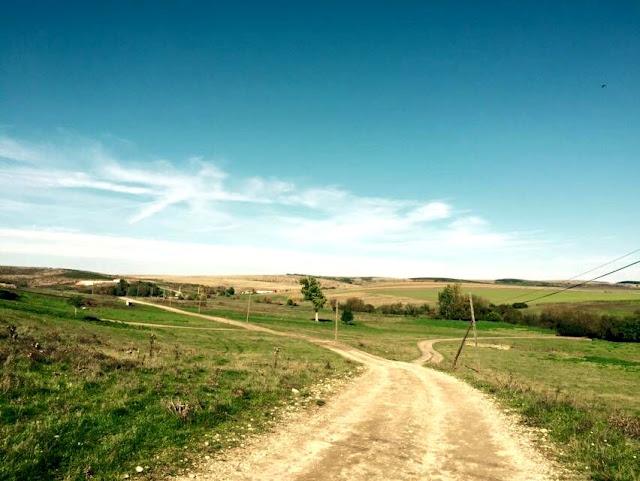 La Petrovaselo în Vie, invie alergarea prin natură. Trail Run Petrovaselo. 24 octombrie 2015. Florin Chindea Maseur Oficial al evenimentului. Peisaj frumos