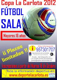 WEB COPA FÚTBOL SALA 2012