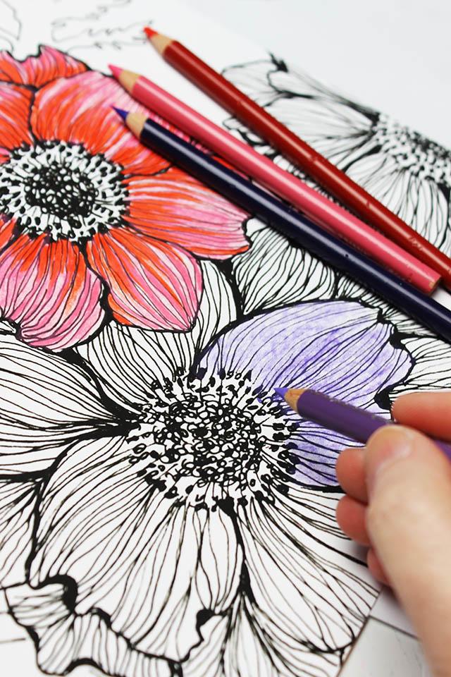 Alisaburke Colored Pencils A Few Tips And Tricks