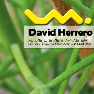 clubmusicsource.comDavid Herrero   Have You Ever Wake EP