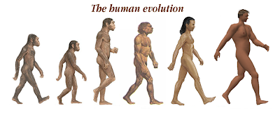 Human Evolution Funny Picture