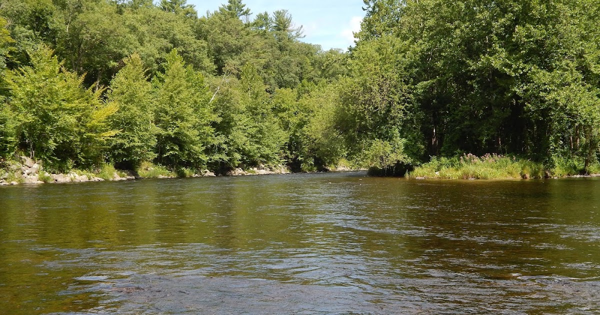 Small stream reflections the farmington river and a old for Farmington river fly fishing