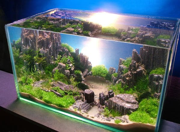 trend home interior design 2011: Aquascape Mini Style Design Inspired