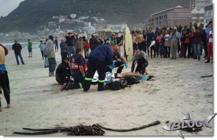 ataque de tiburon en muizenberg beach shark attack