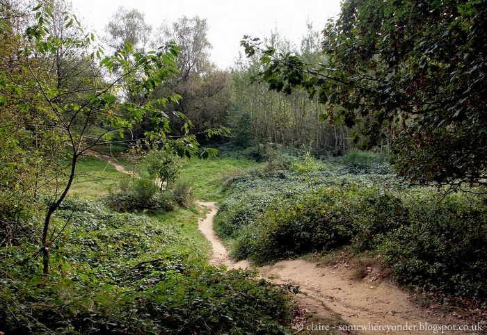 Hill 60 Preserved Battlefield, Flanders Fields Belgium