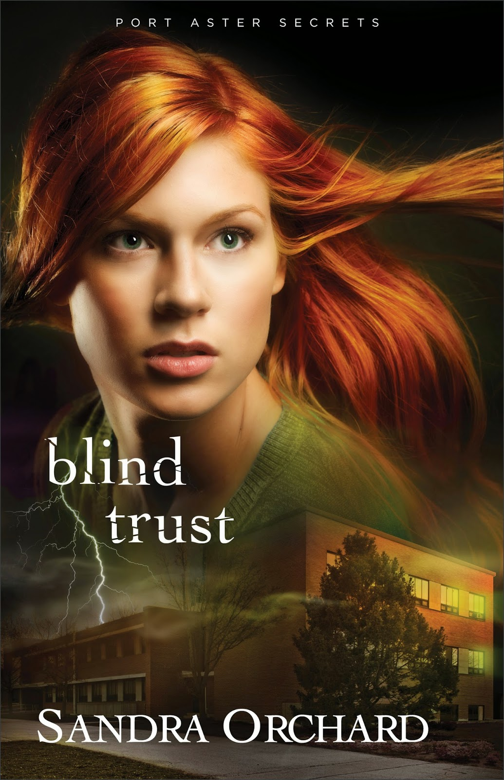 book review of Blind Trust by Sandra Orchard (Revell) by papertapepins