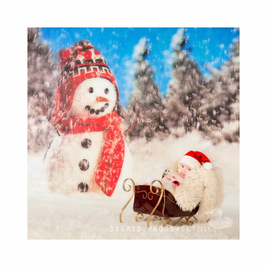 pakapikk-fotostuudios-joulutaust-fotopesa