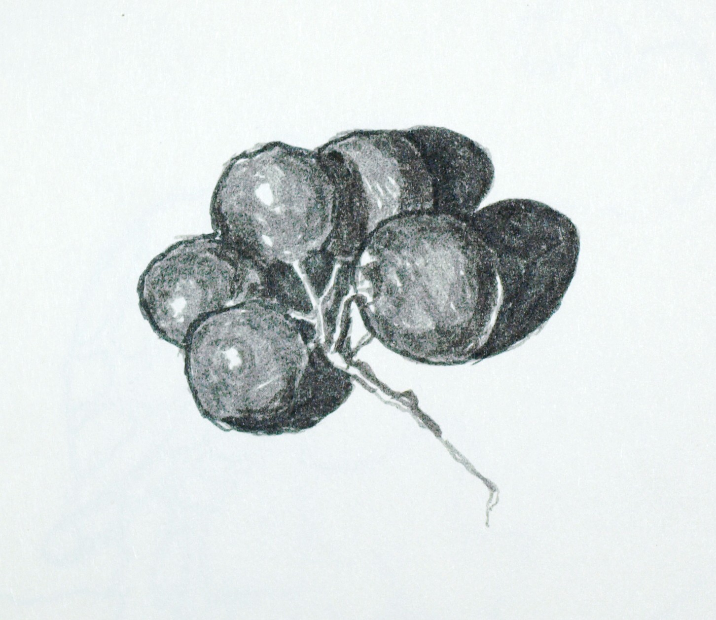 This Drawing Is An Insignificant Little Piece, But A Major Experiment In My  Drawing Process Just A Few Grapes Left In The Fridge, I Wanted To Draw The