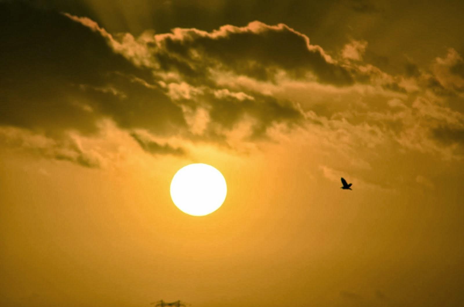 Sempre o Sol!...