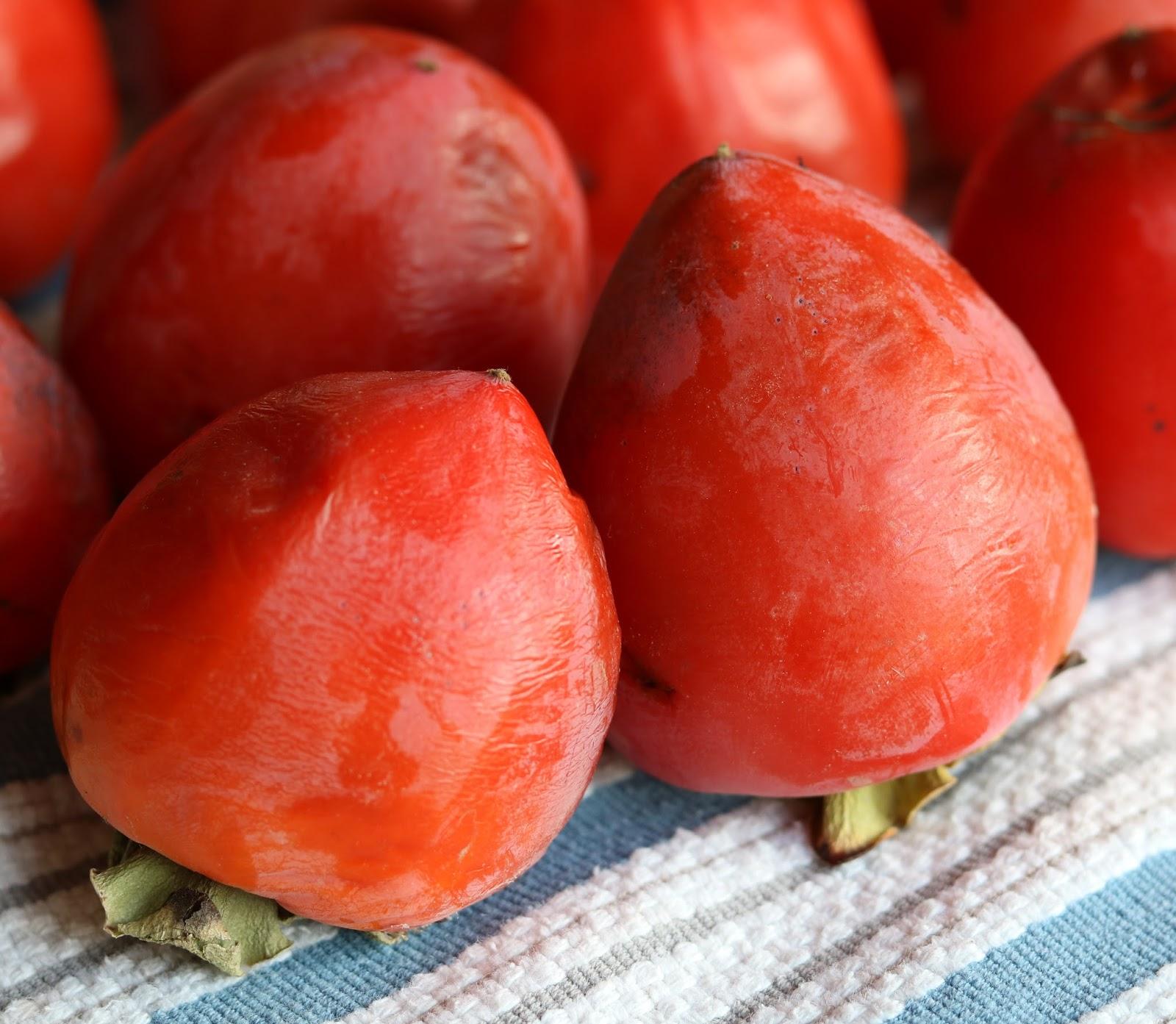 James Beard's Amazing Persimmon Bread Recipes — Dishmaps