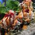 Sushi Hoon - Marpole in Vancouver, Canada