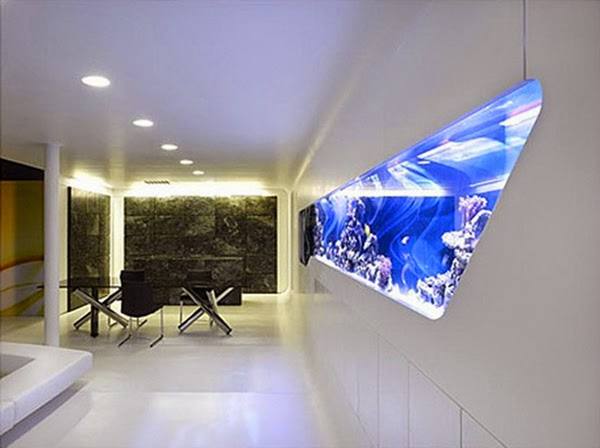 wall aquarium 5 In Wall Aquariums  Have To See Images And Styles amazing ideas