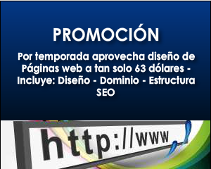Diseo web profesional, venta de paginas web 