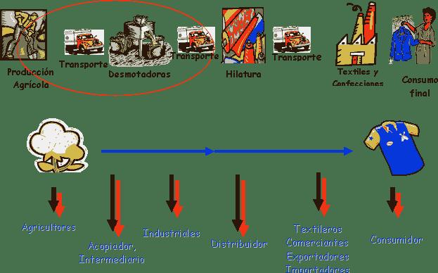 Circuito Productivo Del Algodon : Circuito de producción mirar observar escribir