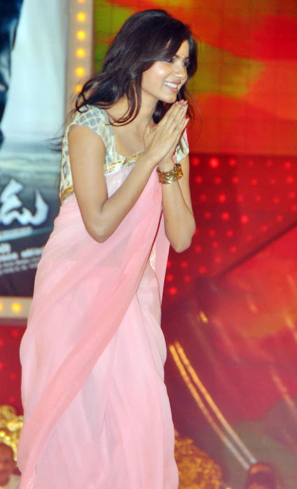 Samantha in Pink Saree at Dookudu 50days Function Pics