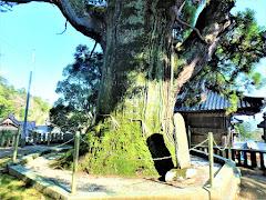 祇園寺(岡山県高梁市巨瀬町)