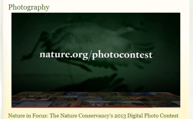 The Nature Conservancy 2013 Photo Contest‏