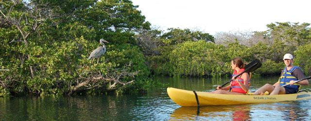 viaggo eco sostenibile in Ecuador, Amazzonia