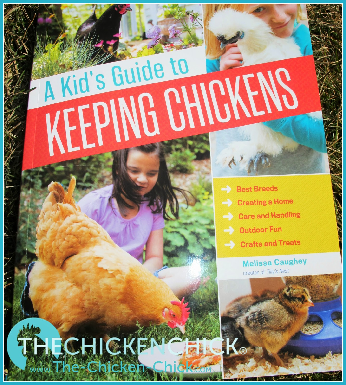 A kid's review of A Kid's Guide to Keeping Chickens