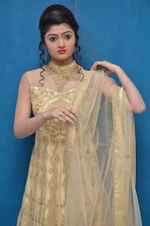 Poojitha Menon Picture Gallery at Ninne Korukunta Movie Audio Launch252816.jpg
