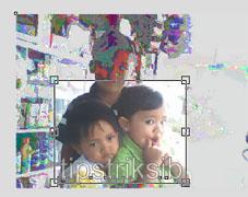 tutorial cara memotong foto dan gambar di corel draw