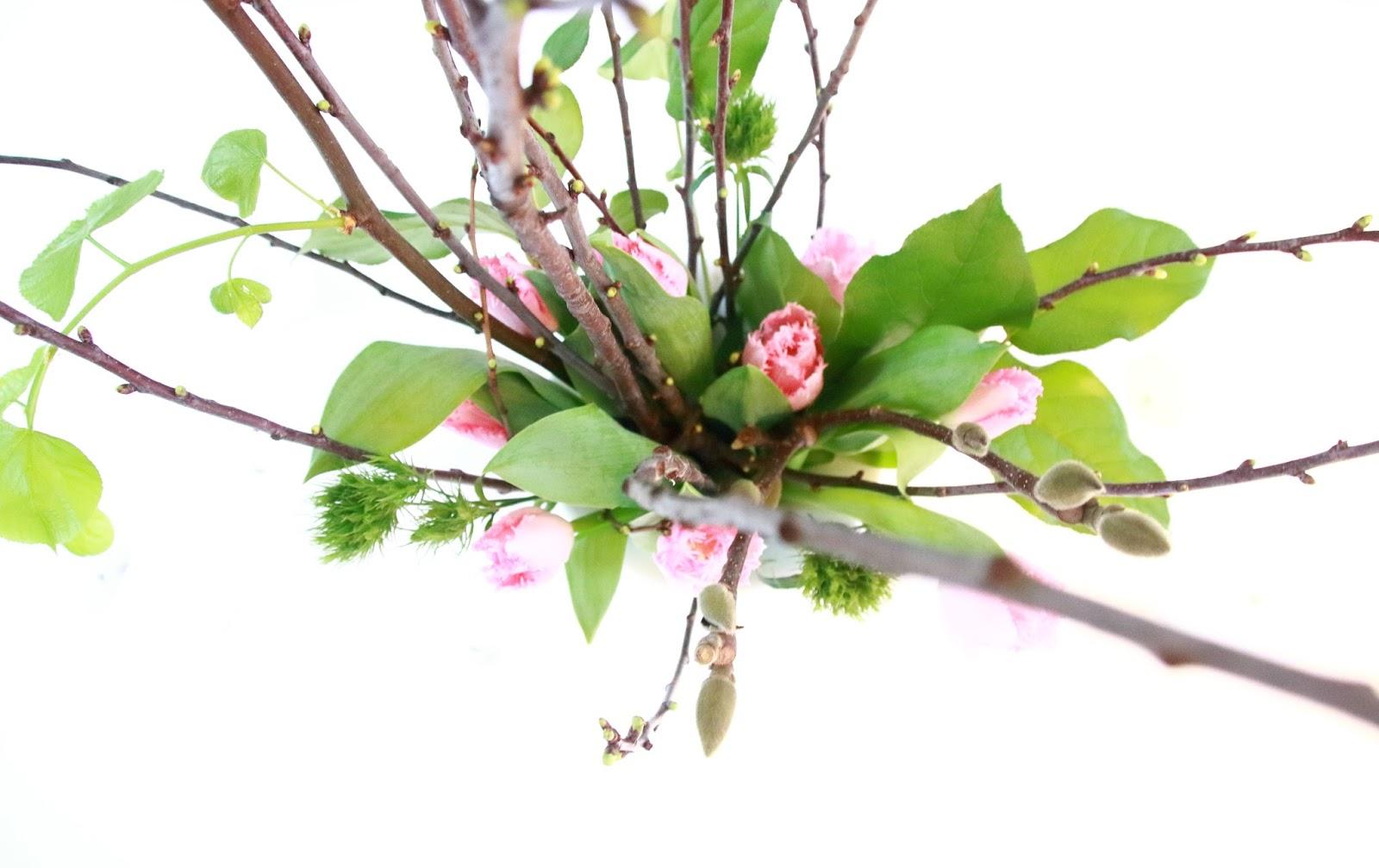 Designedlifeblog.blogspot.com Winter bloomed
