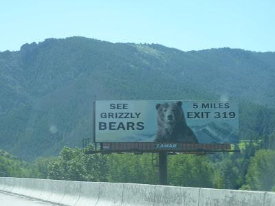 see live bears!