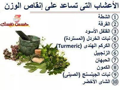 الأعشاب التي تساعد علي إنقاص الوزن