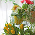 Indoor Spring Garden