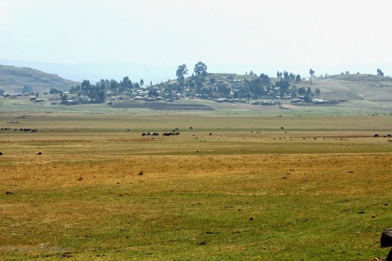 Sululta plains Ethiopia