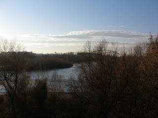 Observatorio ornitológico desembocadura Gállego Ebro