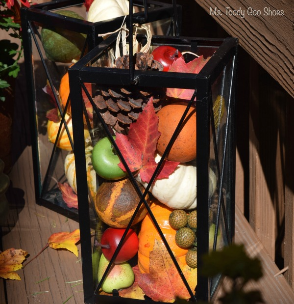 Thanksgiving Lanterns - So simple... just fill with mini pumpkins, pine cones, leaves, gourds, cranberries, acorns, faux fruit, etc. --- Ms. Toody Goo Shoes