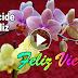 Feliz Viernes - Hermoso vídeo para demostrar lo importante que eres para mi vida, TQM