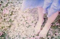 ♥ e pétalas cobrem o chão...