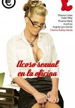 Acoso sexual en la oficina xxx (2014)