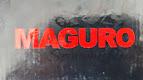 SPINNING MOGURO