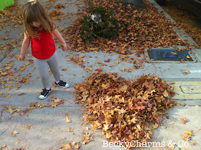 Fall leaves in San Diego in a heart shape from el Barrio Logan, fall, autumn, leaves, san diego, beckycharms