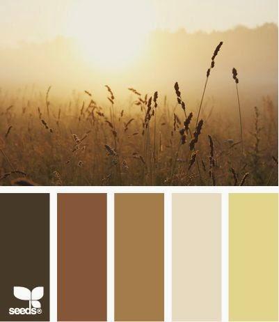 Design tips mori girl inspired room raellarina for Soft brown paint colors