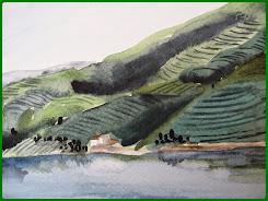 O verde das plantações e o rio...