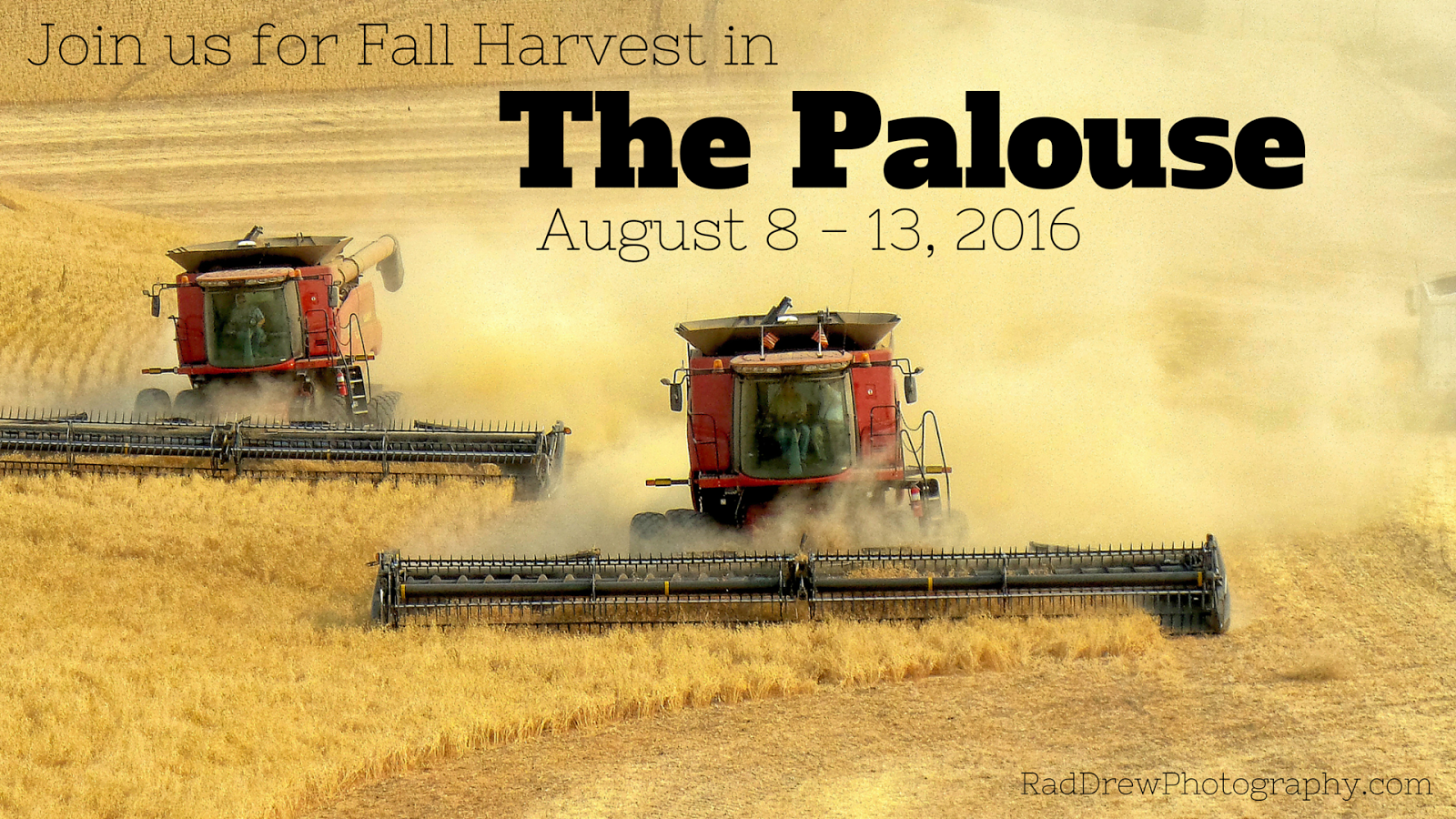 Fall Harvest in The Palouse