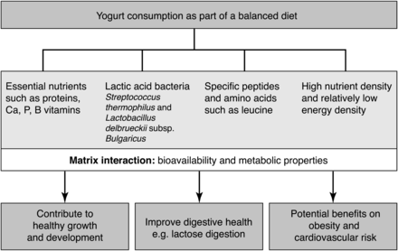 Yogurts, Cheeses & Beyond